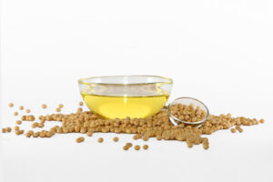 Argentina's Soybean Oil Export Capacity Likely to Increase